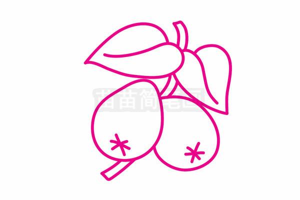 枇杷简笔画图片步骤五