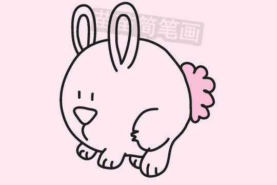 兔子简笔画图片大全作品三