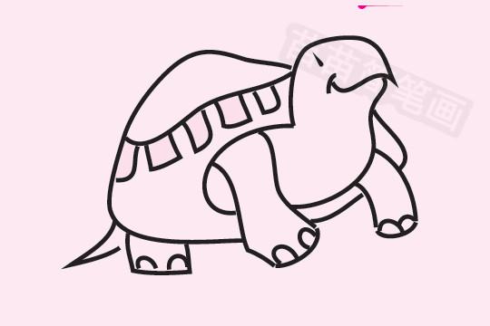 乌龟简笔画图片大全 教程
