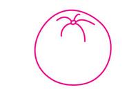 香橙简笔画图片大全、教程