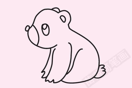 熊简笔画图片大全 教程