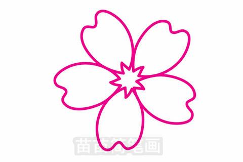 樱花简笔画大图