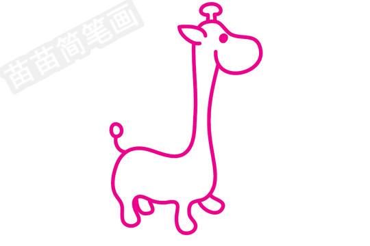 长颈鹿简笔画图片步骤四