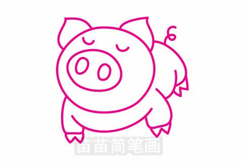小猪简笔画大图