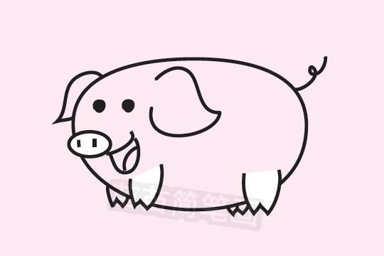 小猪简笔画图片大全作品二