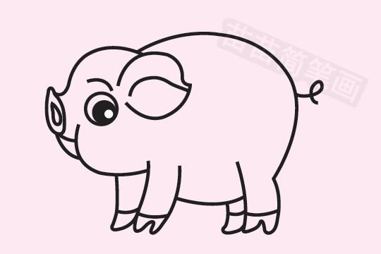 小猪简笔画图片大全作品五