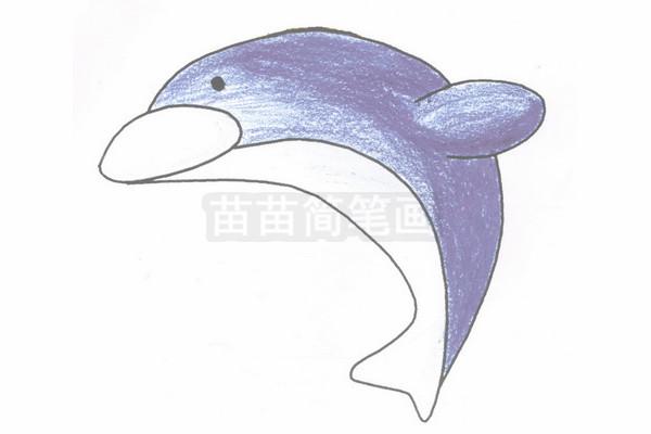 海豚简笔画图片步骤四