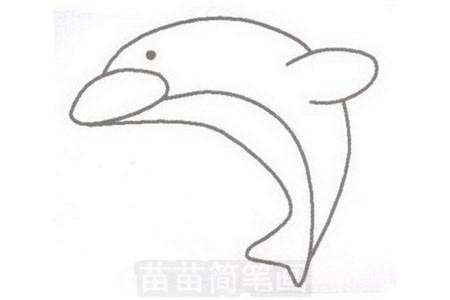 海豚简笔画图片步骤三
