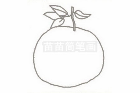 橘子简笔画图片步骤二