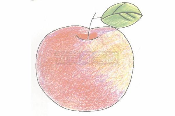 苹果简笔画图片步骤四