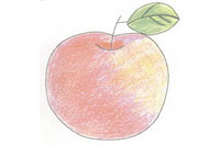 苹果简笔画简单画法