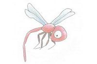 蜻蜓简笔画简单画法