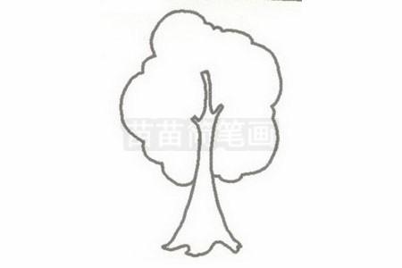 小树简笔画图片步骤二