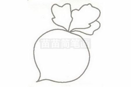 水萝卜简笔画简单画法