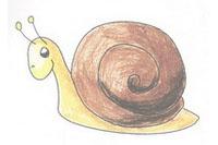 蜗牛简笔画简单画法