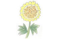 向日葵简笔画简单画法