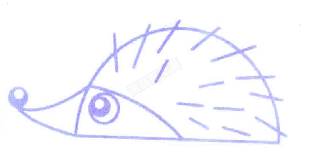 刺猬简笔画怎么画图片