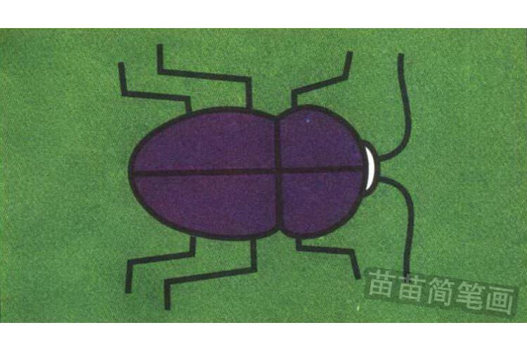 甲虫彩色简笔画图片