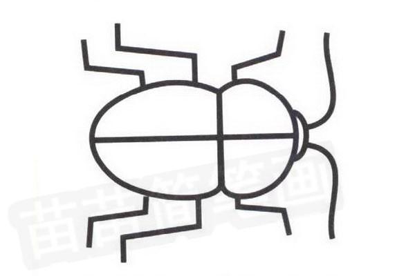 甲虫简笔画怎么画步骤四