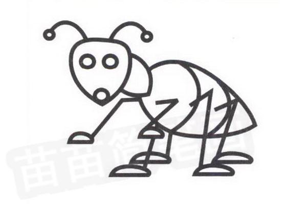 蚂蚁简笔画步骤分解彩色教程