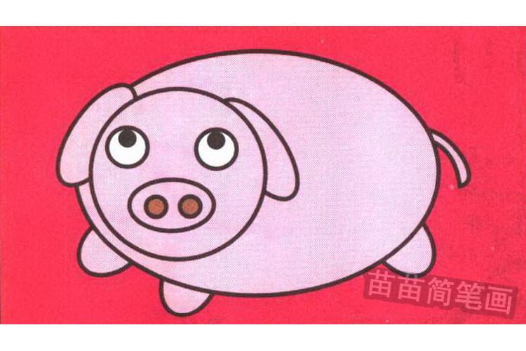 小猪彩色简笔画图片