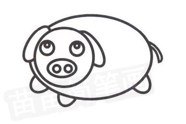 小猪简笔画怎么画步骤四