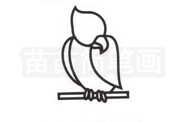 鹦鹉简笔画怎么画步骤三