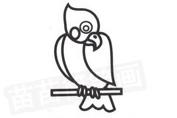 鹦鹉简笔画怎么画步骤四