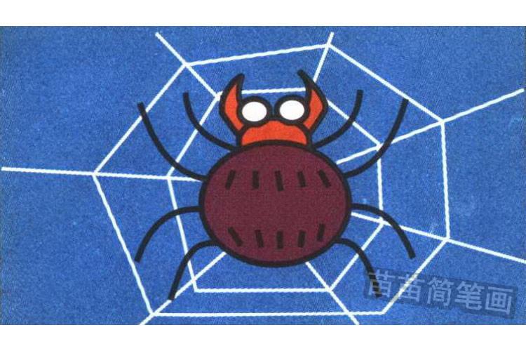 蜘蛛彩色简笔画图片