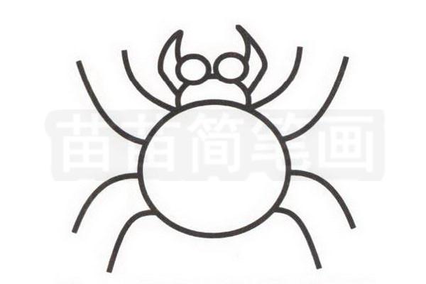蜘蛛简笔画怎么画步骤三