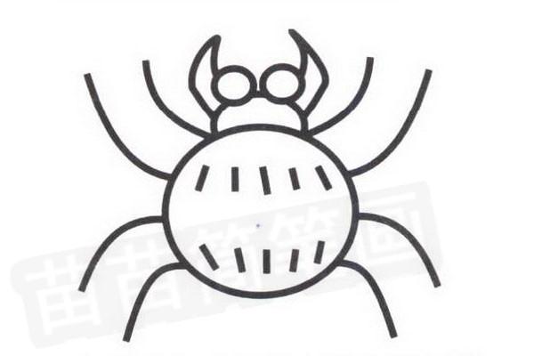 蜘蛛简笔画怎么画步骤四