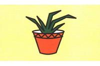 花盆简笔画步骤分解彩色教程
