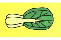 青菜简笔画步骤分解彩色教程