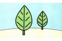 小树简笔画怎么画