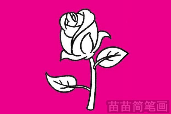 玫瑰简笔画图片大全作品五
