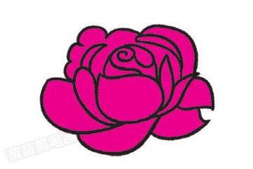 玫瑰简笔画图片教程步骤三