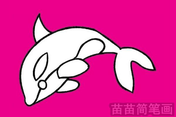 海豚简笔画图片大全 教程