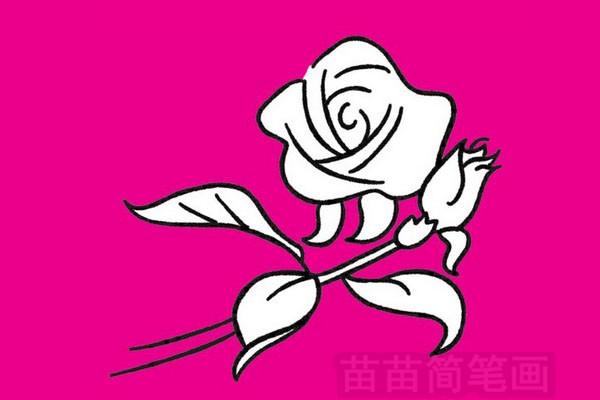 玫瑰简笔画图片大全作品二