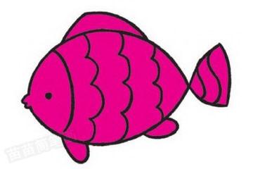下面带大家来看看简笔画鱼的分步骤画法.