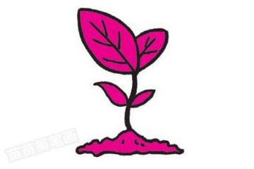 植树节简笔画图片教程步骤三