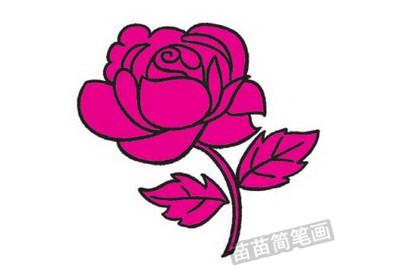 玫瑰简笔画完成图