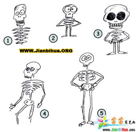 如何画骨骼简笔画图片教程