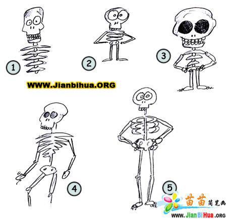 如何画人体骨架简笔画图片教程