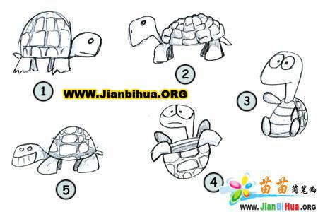 如何画卡通乌龟简笔画图片教程11张(第3张)