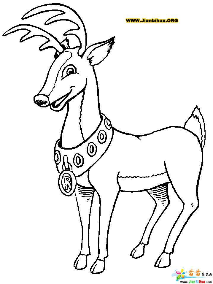 如何画麋鹿简笔画图片教程6张