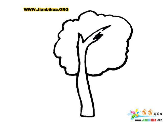 如何画卡通树简笔画图片教程 第3张