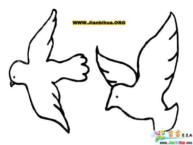如何畫卡通小鳥簡筆畫教程圖片(第5張)