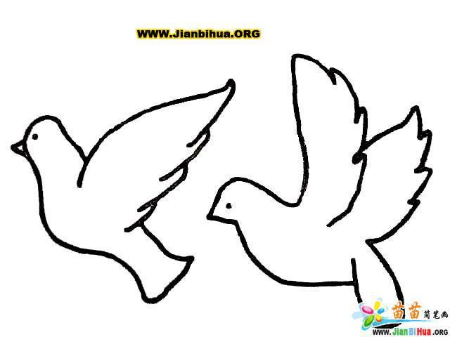 如何画卡通小鸟简笔画教程图片(第6张)