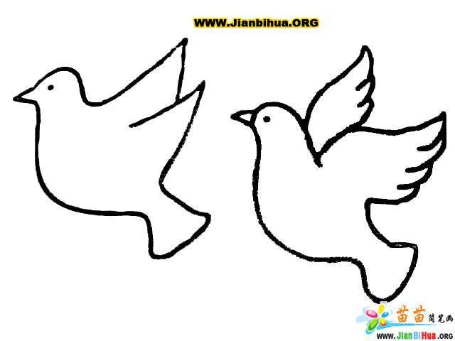 鸟类简笔画:鸽子3; 简笔画:两只和平鸽3;