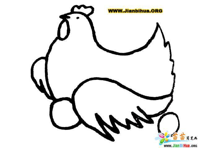 母鸡生蛋简笔画图片 简笔画小鸡 儿童简笔画图片大全